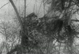 Still frame from: Killed Or Be Killed