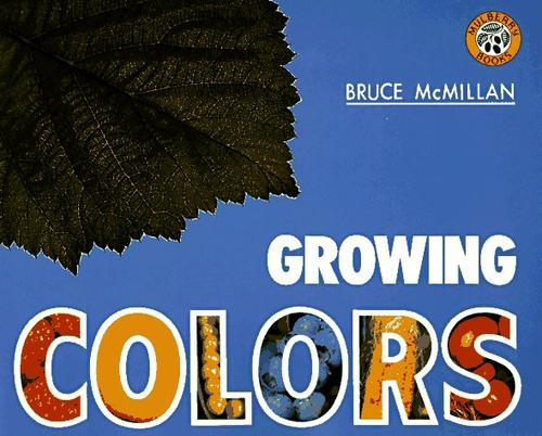 Download Growing colors